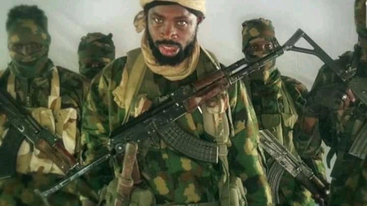 Boko Haram Slaughters Over 40 Rice Farmers In Borno State, Outshines The Nigerian Army