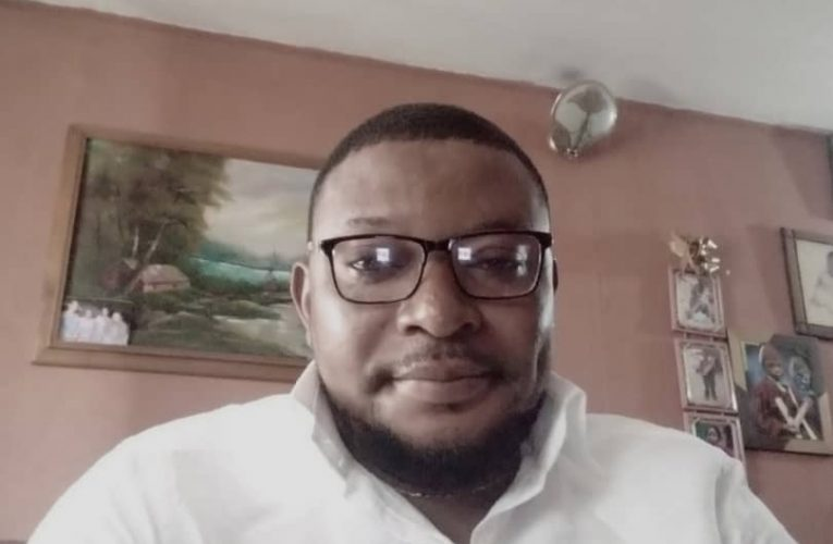 Why The Current National Assembly Is Snubbable – By Karl Ogumah
