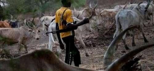 Herdsmen Kill Two, Burnt Amotekun Vehicle In Ondo