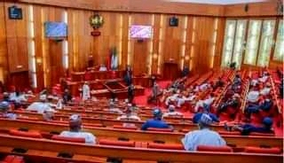 Senate Begins Work On Bill To Prohibit Casual Jobs For Graduates In Nigeria