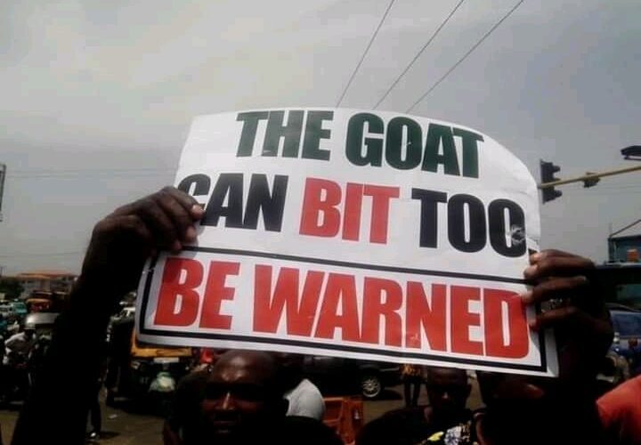 Angry youths shut down Benue, blast Buhari